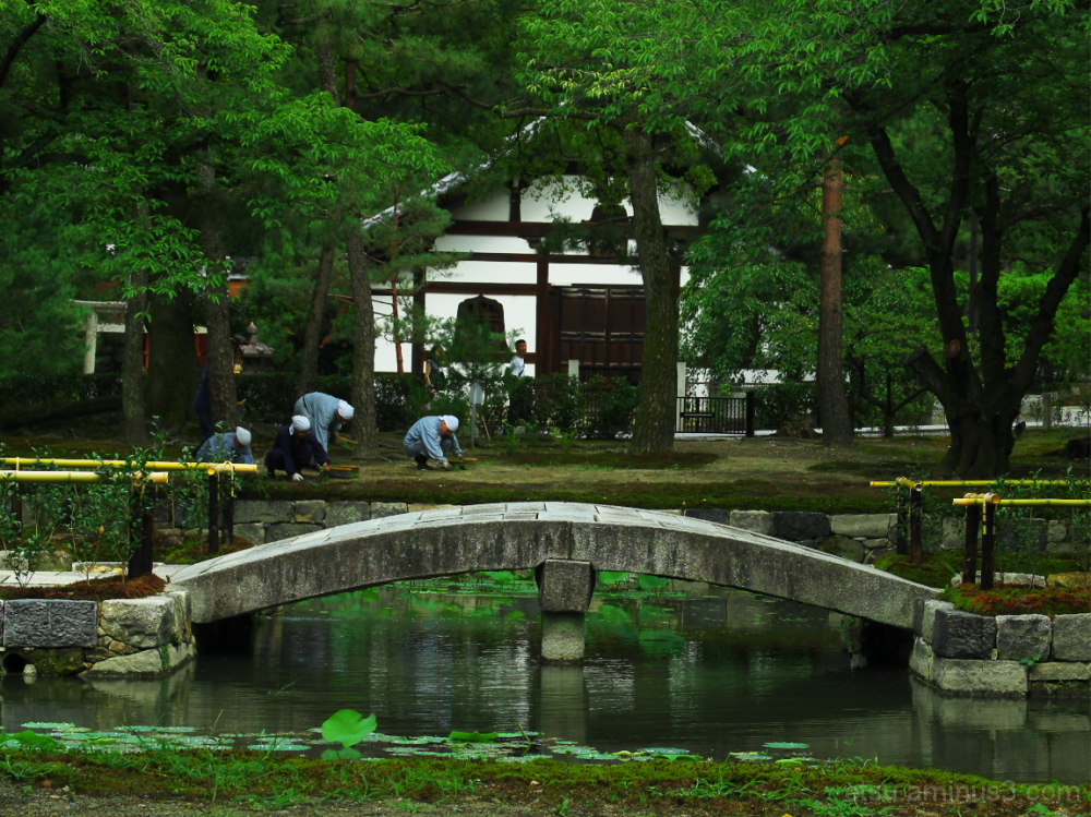 Monks are cleaning the garden 建仁寺