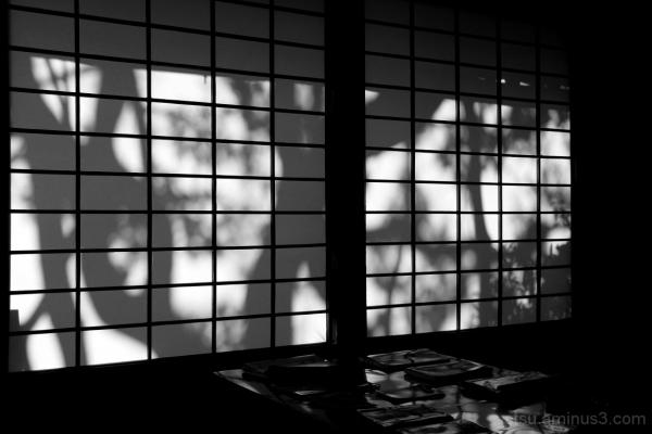 Shadows 曼殊院