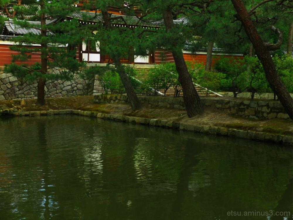 Beyond a pond...... 建仁寺