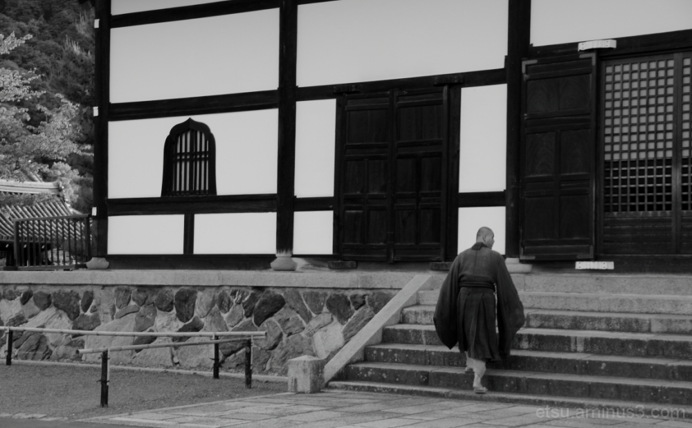 What are you looking at ? 天龍寺