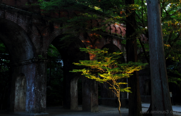 I may be in the spotlight a little bit....... 南禅寺