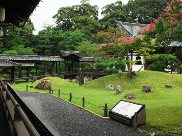 A popular temple 高台寺