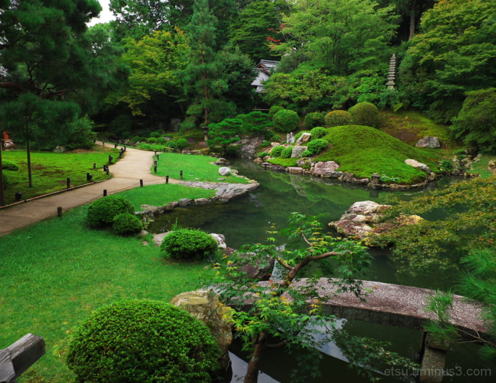 Seeing a garden from the inside....... 青蓮院