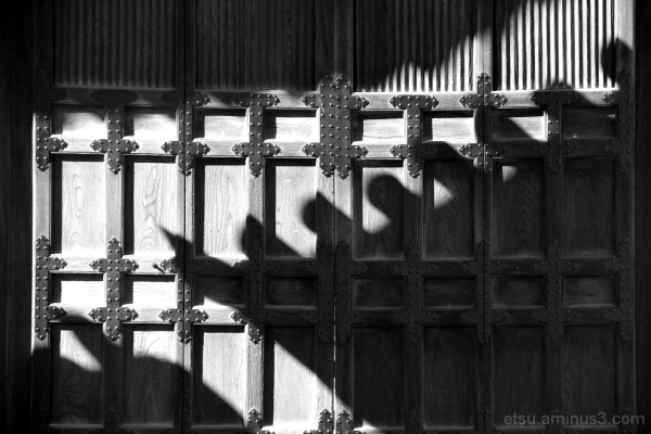 Light and shadow 相国寺
