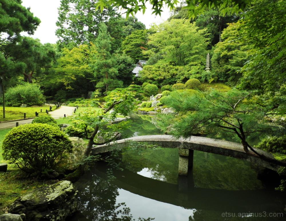 My favorite garden...... 青蓮院