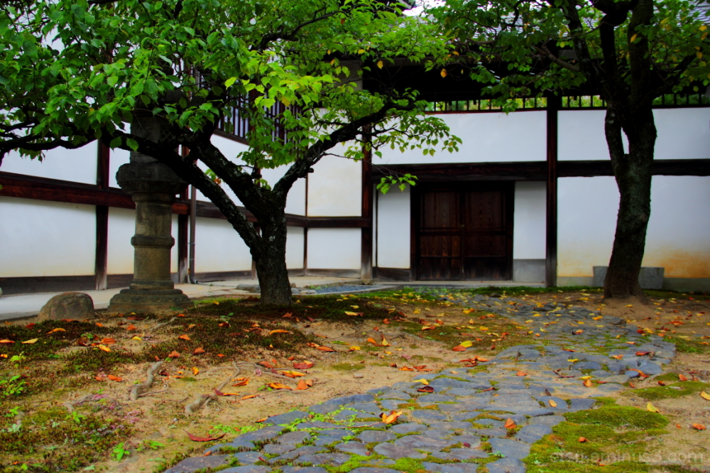 Toward the closed door.......... 妙蓮寺