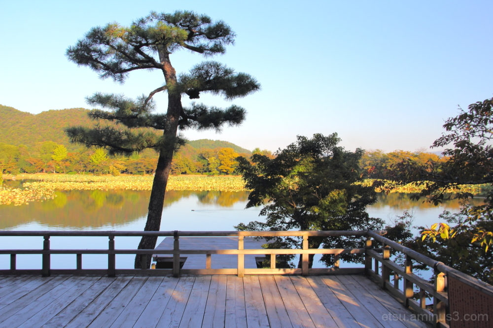 We love this peaceful world....... 大覚寺