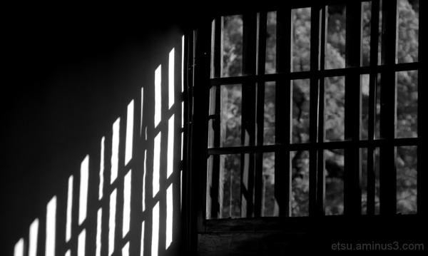 Light and shadows............. 鹿王院、
