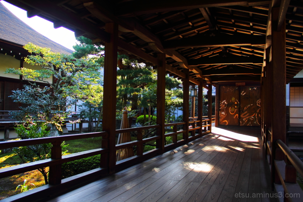 Through a passage........ 大覚寺 廊下