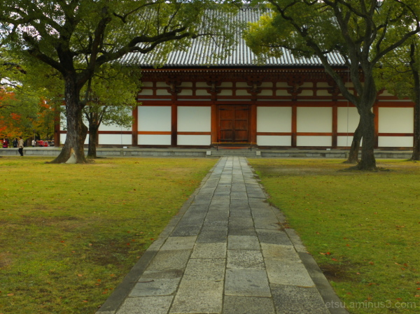 The stone pavement leads you to the hall....... 東寺