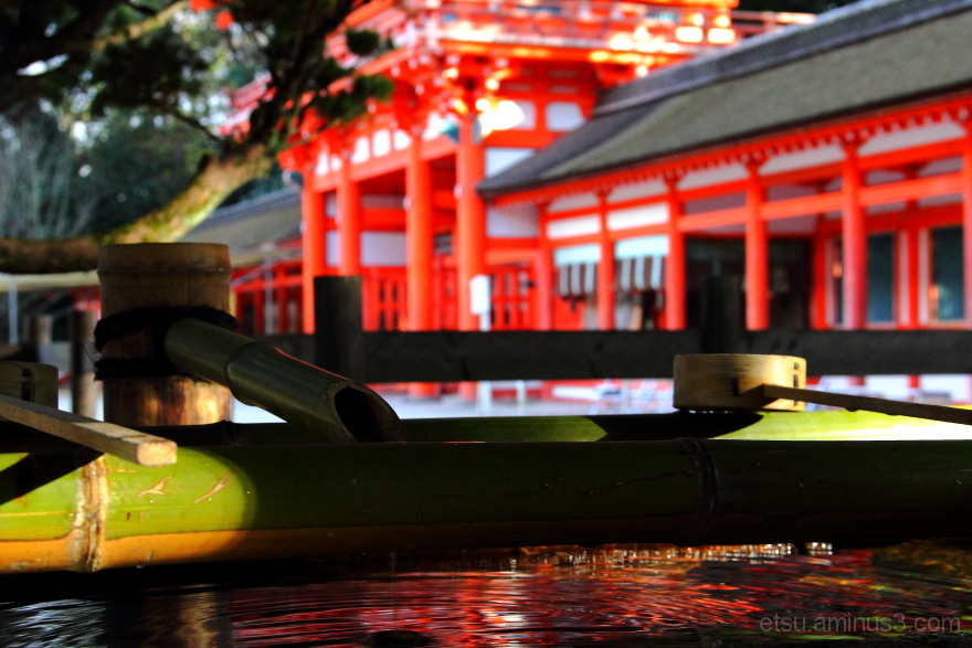 The limpid water......... 下鴨神社