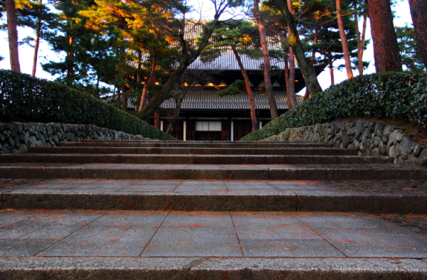 Toward the main hall........ 相国寺