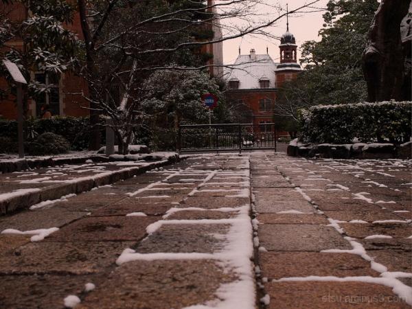 The first snow....... 同志社大学