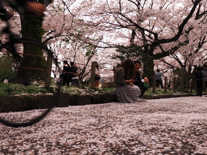 Under blooming flowers..........