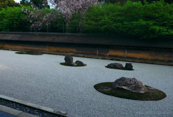 The Zen garden..............