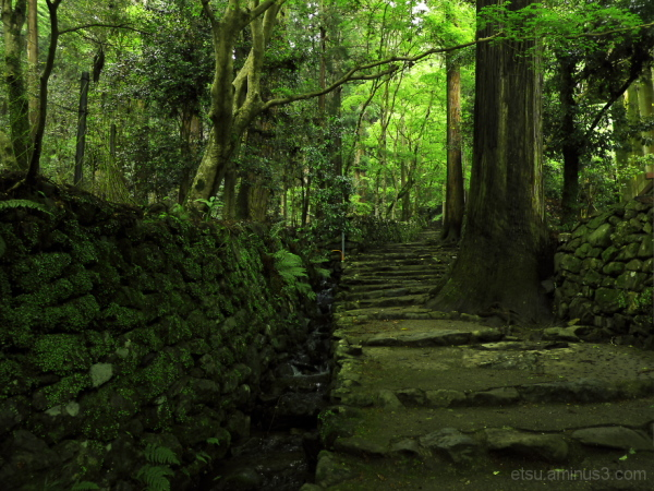 The old path...........