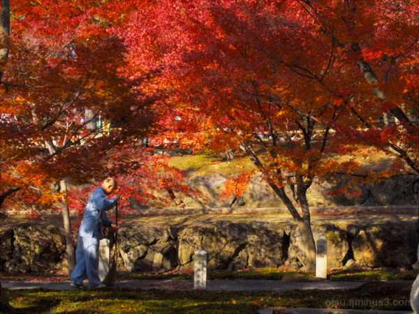 A monk with red leaves...........