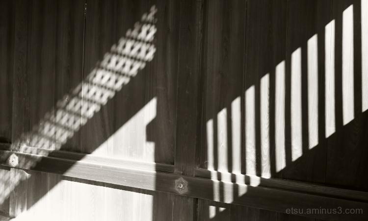 Light and shadows.............