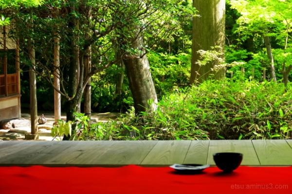 While seeing the zen garden...........
