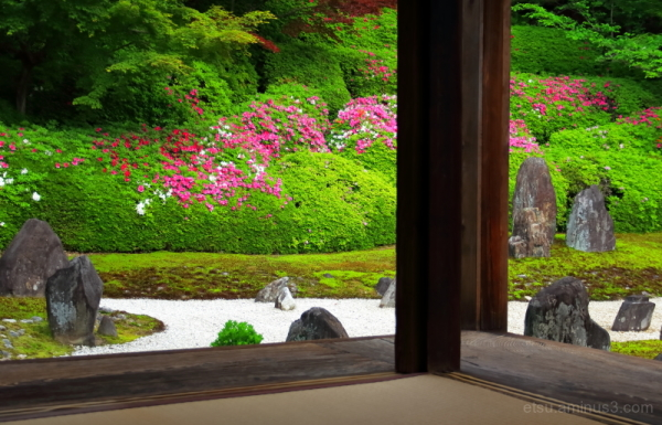 Zen garden with blooming flowers..........