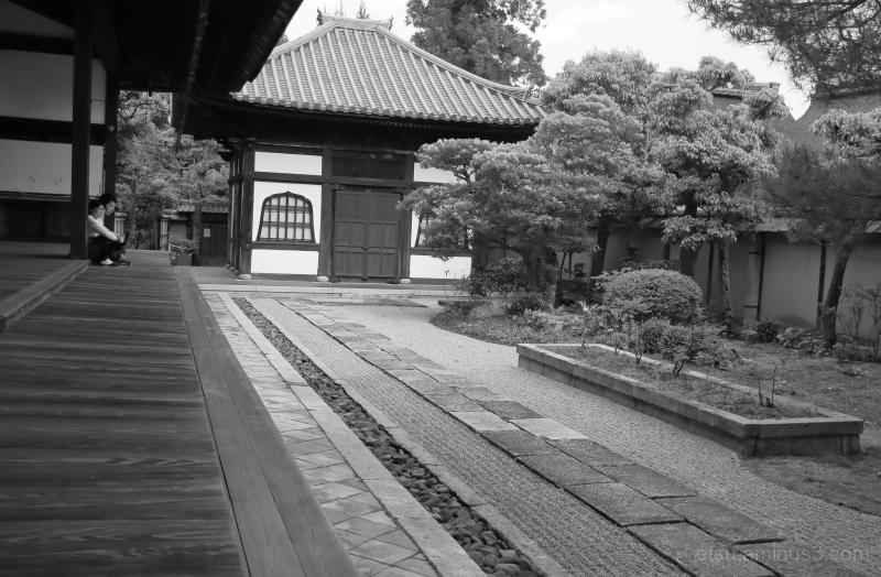 Zen garden.........