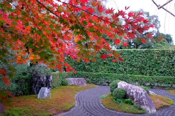 Autumn Zen garden..........