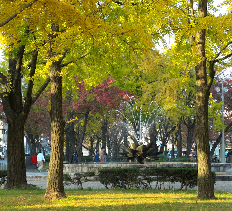 A beautiful day in Autumn