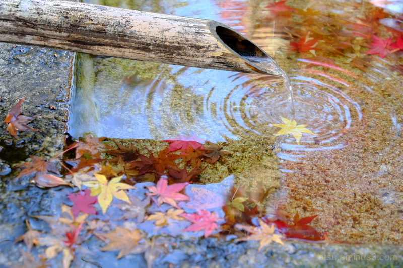 The small ripple-2