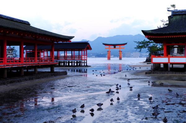 Torii and shrine buildings(Miyajima)