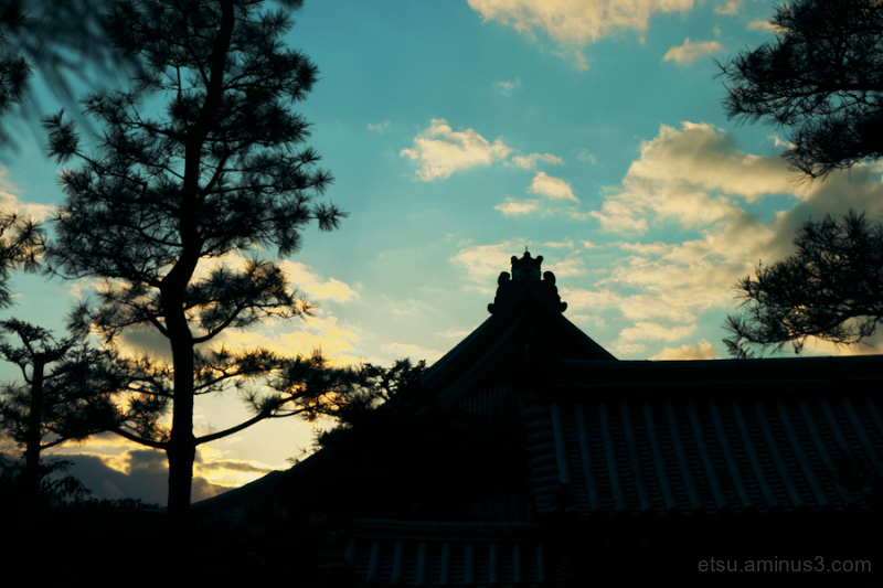 Seeing the blue sky toward the evening
