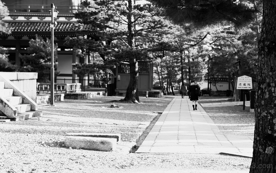 walking on the path of a temple(B&W)