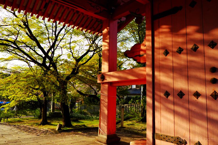 Near the gate...........