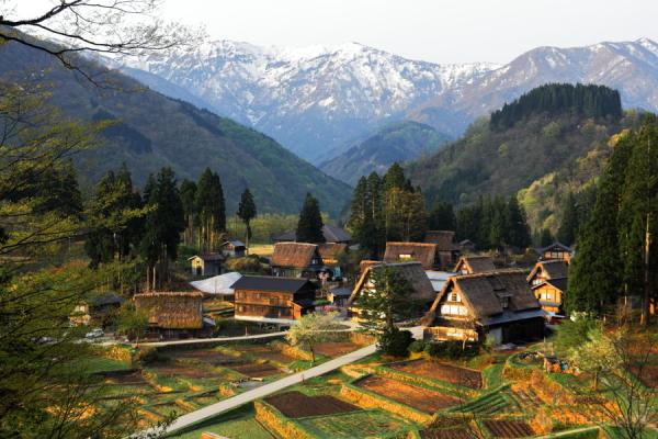 Gokayama-World heritage site-in early summer