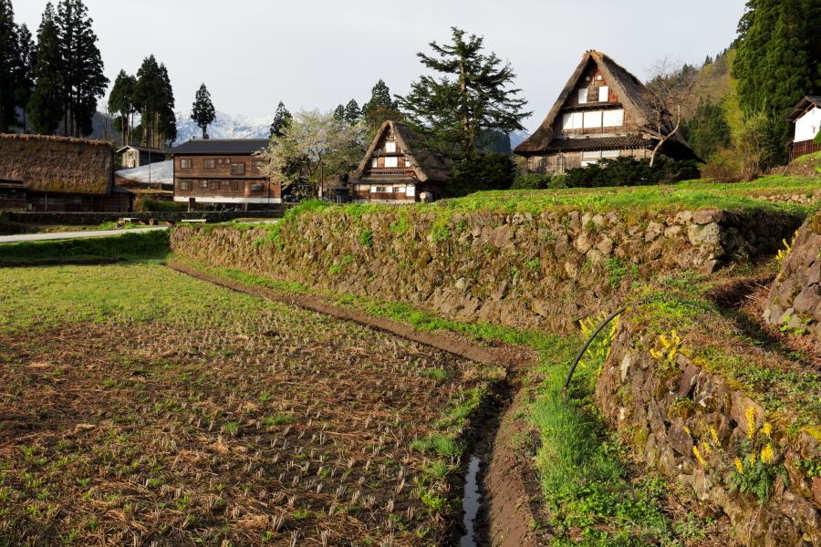 Ainokura-World heritage site-in early summer
