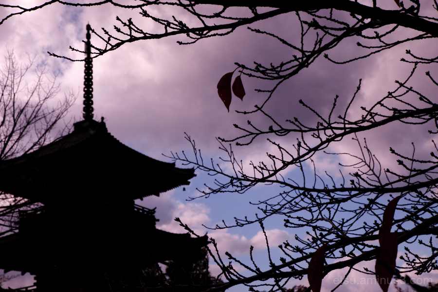 A pagoda in the evening