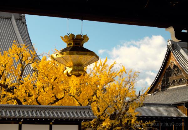 Nishihongan-ji temple