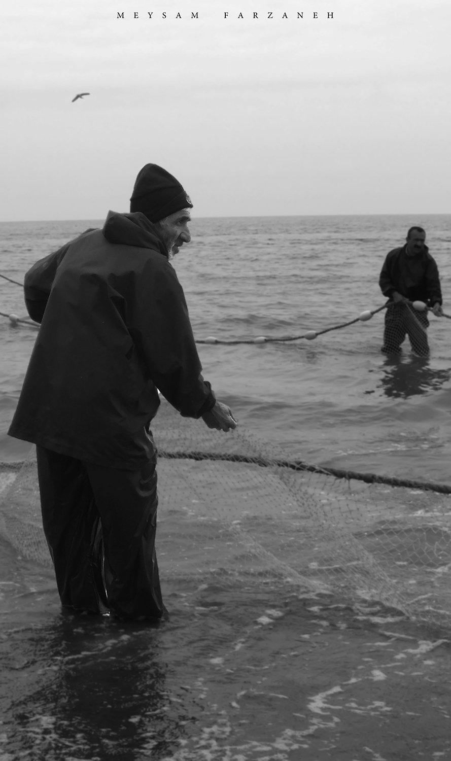 fishinf in the caspian sea