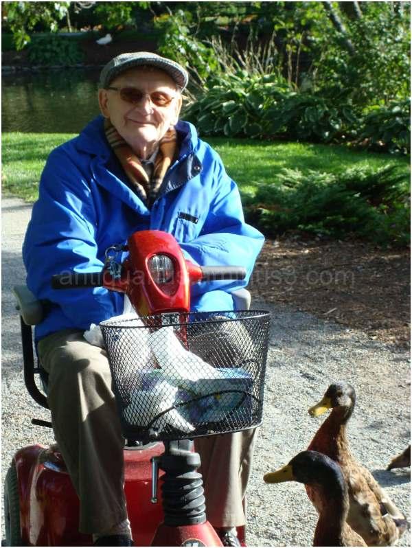 Dad Feeding the Ducks at the Park