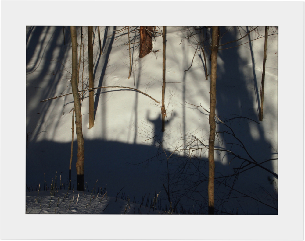 Winter Walk - Shadows