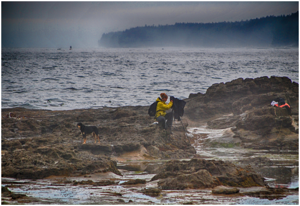 Photographer and her dog work with Pacific fog
