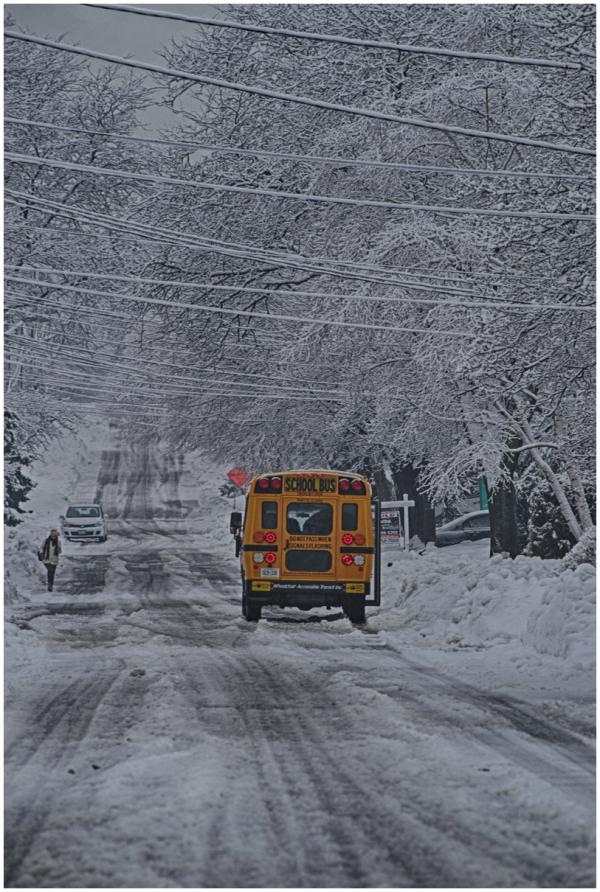 Snowy school day, Toronto, ON