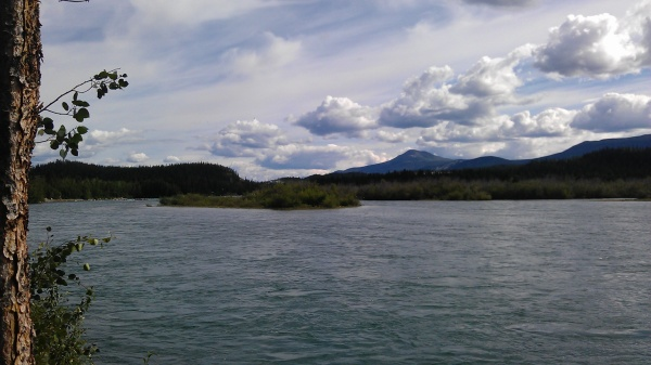 Sunny Day on the Yukon River