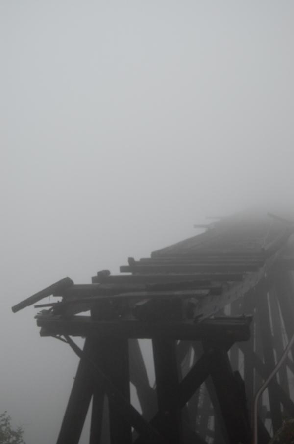 Foggy tracks