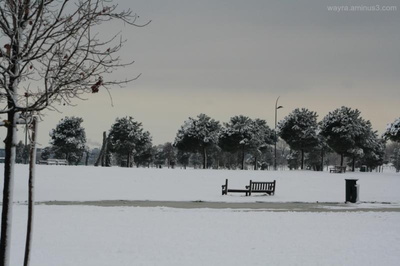 Neve e silenzio