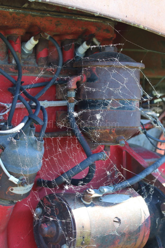 Spider web on old tractor