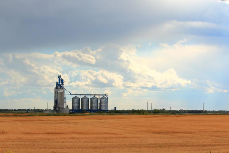 Grain Station