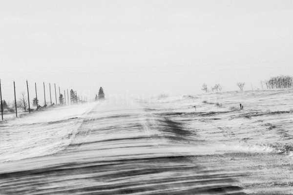 Cold road in winter