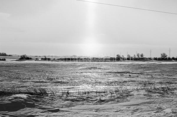 Cold field in Manitoba