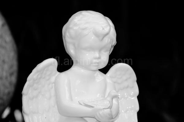 Angel in indoor garden