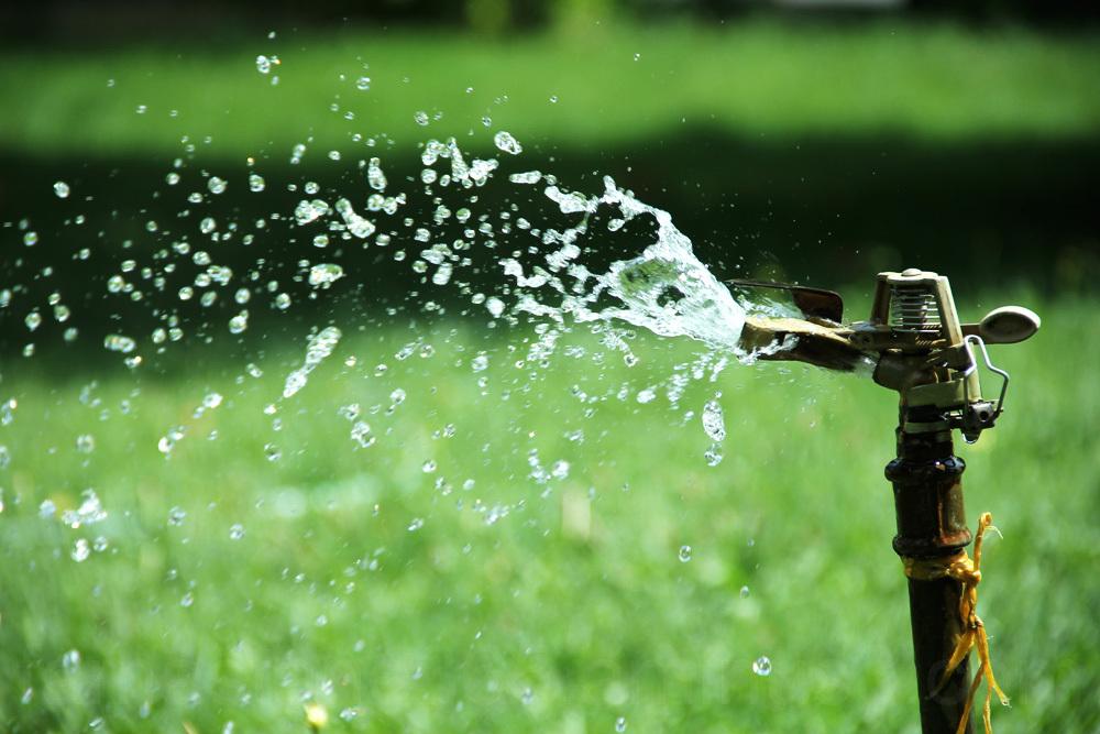 Forbidden water in a hot summer.. # 14